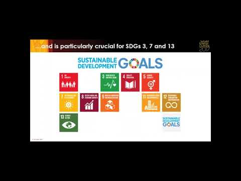 Webinar: The Sustainable Development Scenario, World Energy