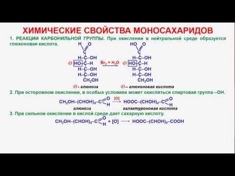 ekstrakt- pustyrnika - MEDSIDE