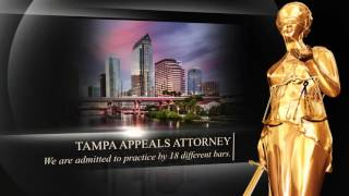 Tampa Appeals Attorney (813) 200-4311 Appellate Lawyer