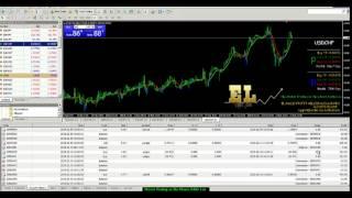 Software Signal Professional Options, Forex Trading Terbaik di Indonesia-Malaysia-Brunai-Europe-USA