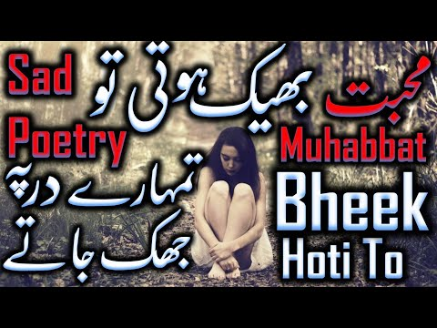 Sad Poetry | Muhabbat Bheek Hoti To | Voice: Zishi Rajpoot | KitaB e IshQ