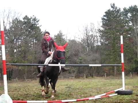 Saut d 39 obstacle a cru 1 metre youtube - Frison saut d obstacle ...