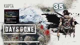Зараженные зоны в Кретер-Лейк  ▬ Days Gone. Жизнь после Прохождение 35