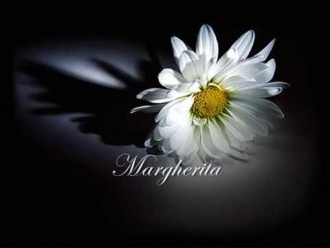 Margherita - Riccardo Cocciante (with lyrics)