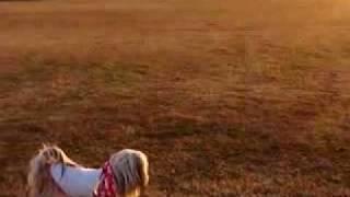 ダンディはボール遊びが好き! otonとサッカー! リリィは辺りを眺めて...