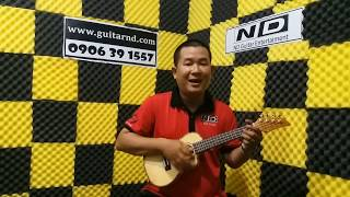 Giới thiệu một số mẫu Ukulele cao cấp - Guitar ND Shop
