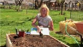 Vegetable Gardening : Growing Zones for Vegetable Gardens