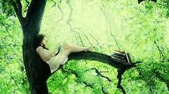 'Romantiek in de jungle'  Gratis luisterverhaal van auteur Jan Razenberg 26.30 min.
