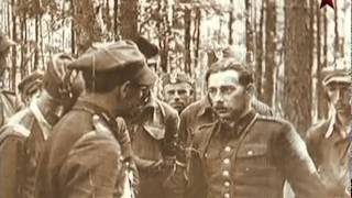 Воины мира! Военные музуканты.  Как они повлияли на исход!!!