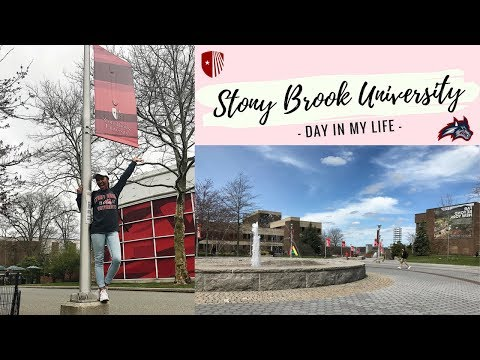 Day In My Life At College | Stony Brook University
