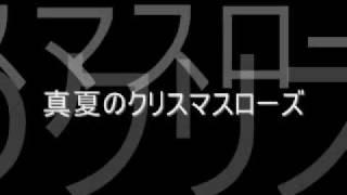 AKB48 teamA 5th公演の 「真夏のクリスマスローズ」です.