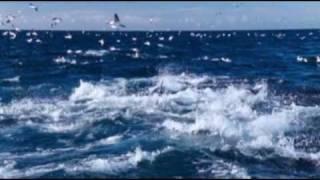 Download Ennio Morricone - Le vent, le cri Mp3 and Videos