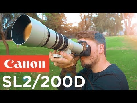 Canon SL2/200D Review - The Best Beginner DSLR For 2018!