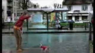 Kick Dog Commercial (Funny as hell)