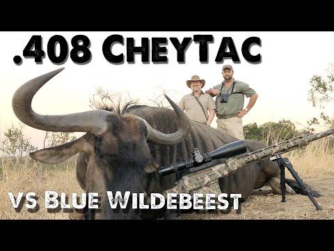 CheyTac .408 - Vs Blue Wildebeest - Long Range Hunting