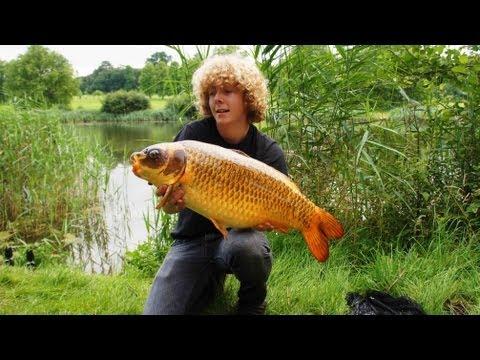 Episode 53 - 24hours At Longleat, Top Lake - Nuffinbutfishing