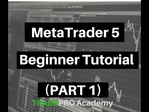 metatrader-5-beginner-tutorial-(part-1)