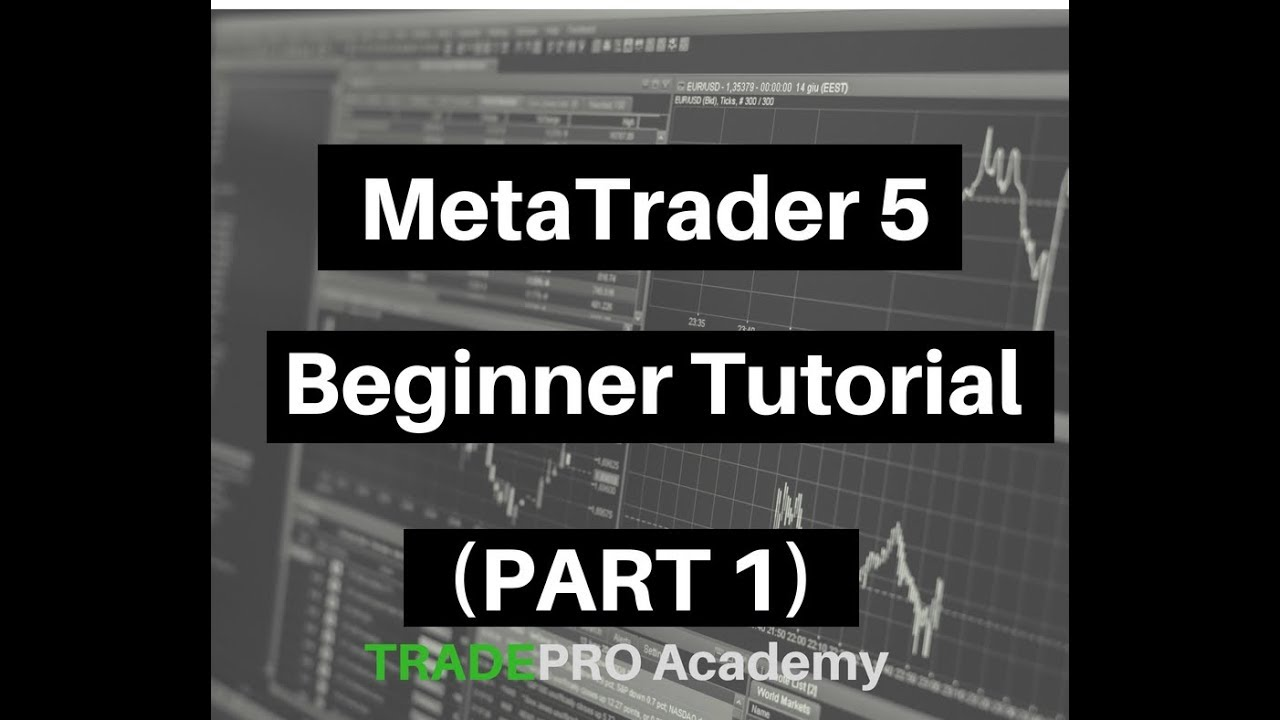 Metatrader 5 Beginner Tutorial Part 1 Youtube
