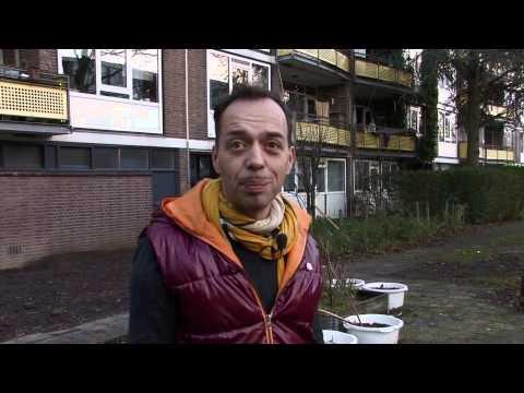 Wat bezielt Rotterdam – hotspot hutspot