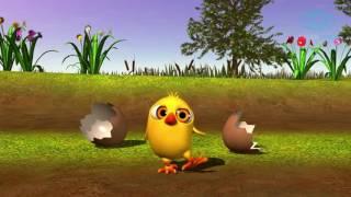 Цыпленок Пи.  (Испанская версия).