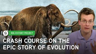 Crash Course Big History: The Evolutionary Epic