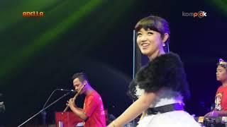 Download Lagu om adella mutiara hidupku arneta pesek mp3