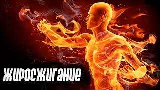 постер к видео Сжигание жира #1 - особенности нагрузок, рацион, организация тренировок для похудения