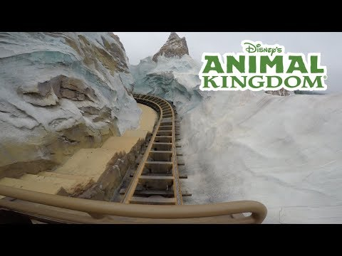 Riding Expedition Everest & Dinosaur before Pandora: The World Of Avatar!
