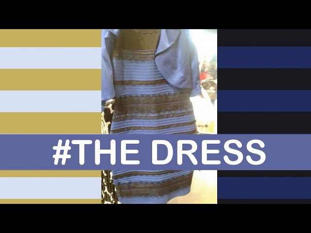 How #TheDress Confused Everyone | LittleArtTalks