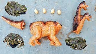Trò Chơi Khủng Long 3 Đầu Đẻ Trứng ❤ ChiChi ToysReview TV ❤ Đồ Chơi Bài Hát Trẻ Em Baby Doli Song