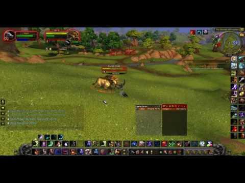 Level 60 Druid VS Level 100 Mob