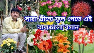 গ্রীষ্মের বাগানে কোন কোন বাল্ব/কন্দ বসাবেন | গ্রীষ্মের বাগান ২০২১ | My Garden Raju Paul