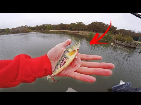 Crazy ZOMBIE Lure Catches RARE Tagged Bass!