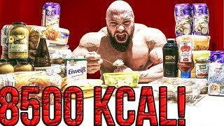 8500 Kcal täglich! Alle Meals, alle Nährwerte im Bodybuilding