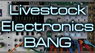 Livestock Electronics BANG // Lo-fi glitchy game inspired wavetable action