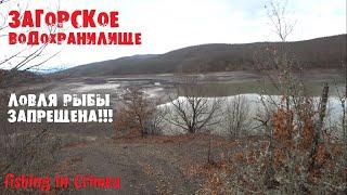 Загорское водохранилище рыбалка запрещена сети браконьеров