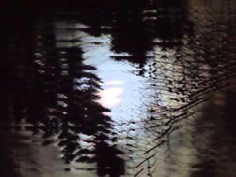 """CosmoMoose """"Tears of the Moon"""""""