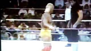 Undertaker vs Hulk Hogan in the WWFs best match of 1993