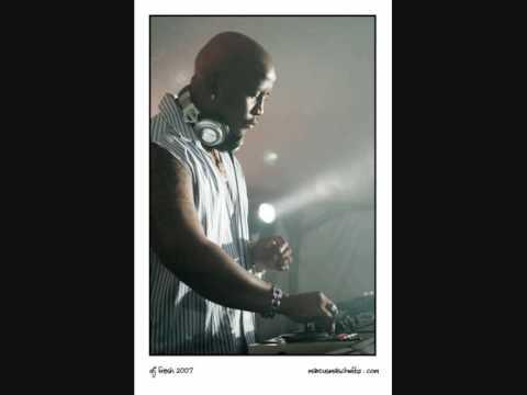 DJ Fresh Feat. Pendulum & Fats - Babylon Rising