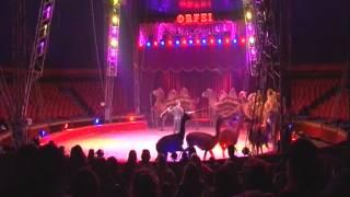 """""""Mamma Mia"""" al Circo Orfei di Darix Martini"""