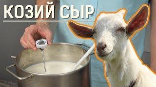 Варим козий сыр в домашних условиях: сыроварня Fansel