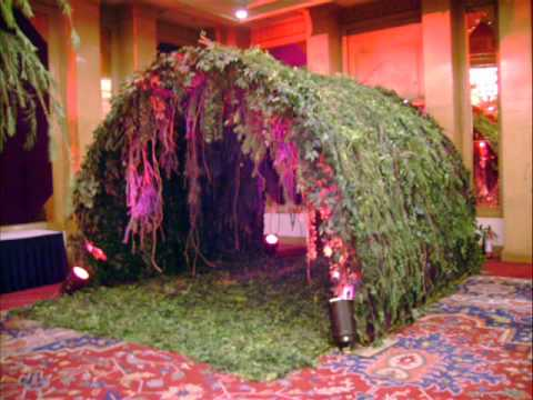 Jungle Theme Party Decorations