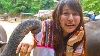 Polar Bear EP.0 ☀ Chiang Mai traveling ☀