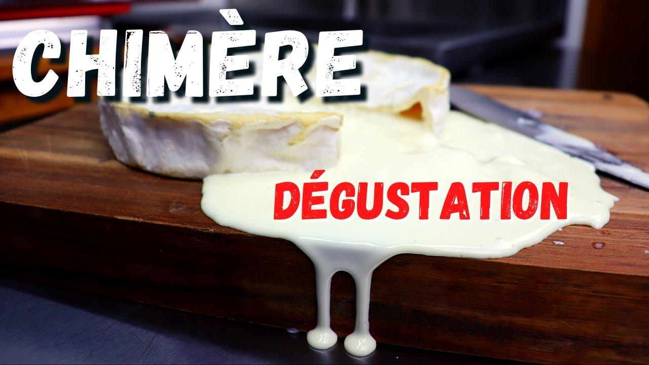 Dégustation de la CHIMÈRE - Fromage avec TOUS LES FERMENTS en même temps! Résultat!?