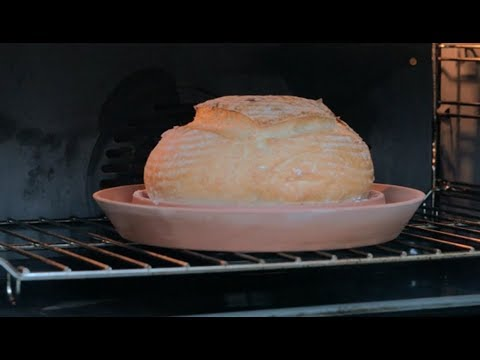 The Spring Oven: Baking at home with steam