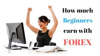 How Much Money can a Beginner Make in Forex Trading?