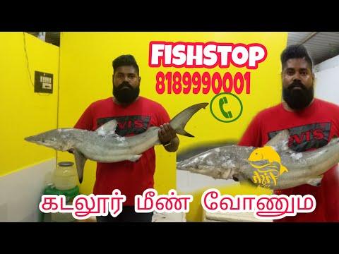 Fishstop - 8189990001  Order Fresh Seafood Online Www.fishstop.in