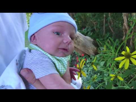 1 MONTH OLD BABY GOES OUTSIDE FOR THE FIRST TIME