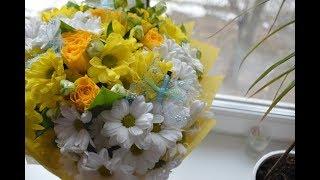 видео Толкование цветов, какие цветы - что означают и когда их дарить?