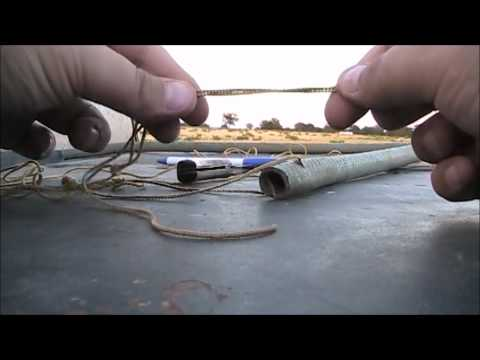 Making and Using a Pigeon Hobble, Birddog Training.